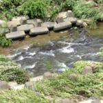 『源流シリーズ!』天白川~植田川を遡る