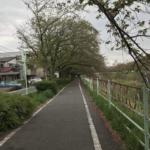 『お花見』香流川の桜:2018年No,4♪